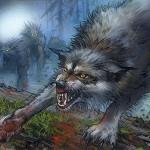 Immerwolf banner