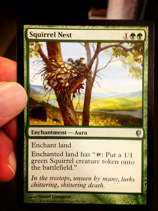 Squirrel Nest!